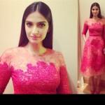 Sonam Kapoor Elie Saab Couture @ Cannes 2013 gala dinner